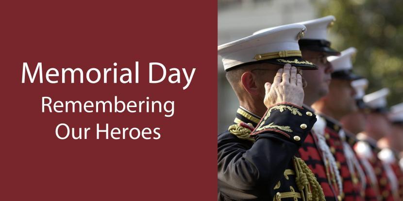 Military veterans saluting the flag