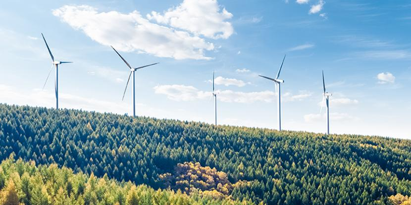 Interested in offsetting traditional energy sources with renewable resources for your business? Learn more about investing in a wind turbine for the office.