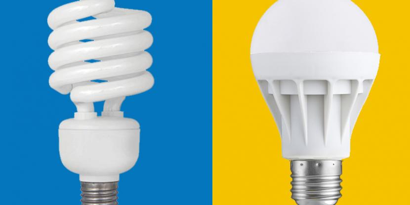 In the battle of the bulbs, will LED or fluorescent come out on top? Mr. Electric will be the judge of this light bulb showdown. Learn which bulb is best for you.