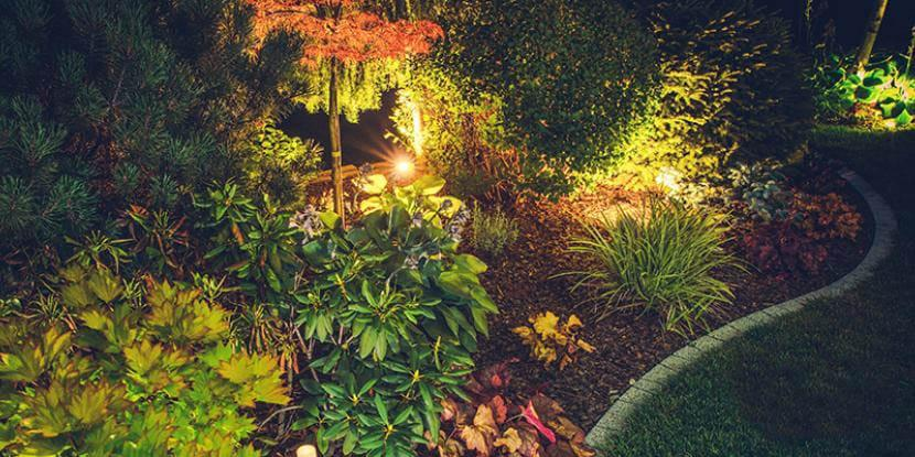 Landscape lighting can turn a drab yard into a modern garden at night. Is it the right option for you? Learn more from the experts at Mr. Electric.