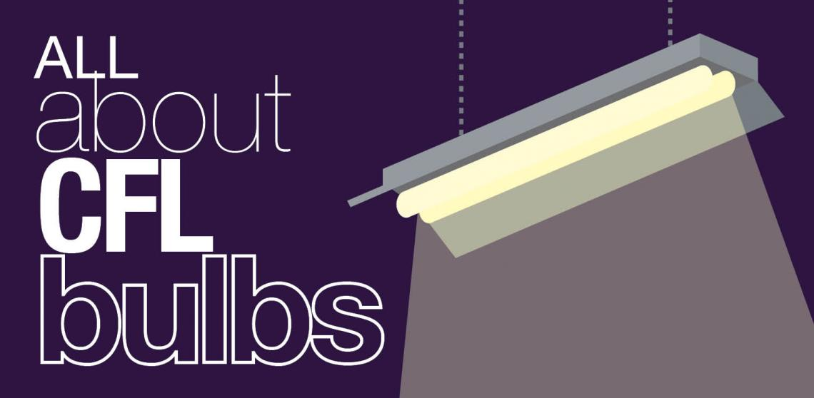 """Graphic with title """"All About Compact Flourescent Light Bulbs"""""""
